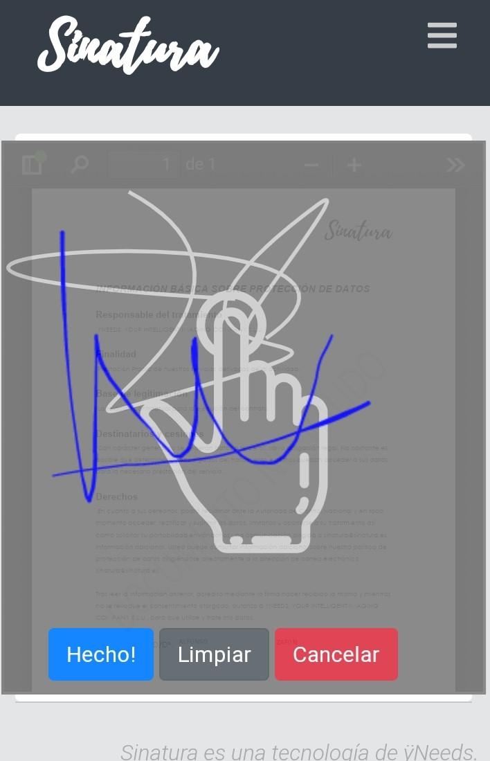Proceso de Firma del documento